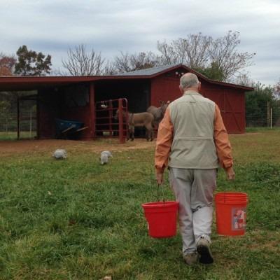 fazendeiro exercendo sua capacidade de trabalho