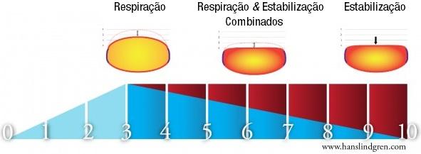 Níveis de controle da pressão intra-abdominal