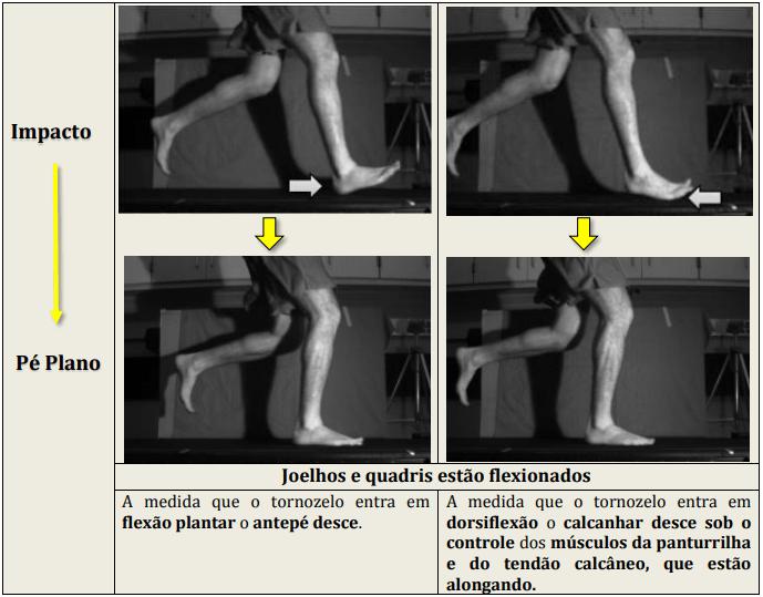 Diferenças biomecânicas entre os modos de atingir o solo. Cinemática da corrida - impacto para pé plano.