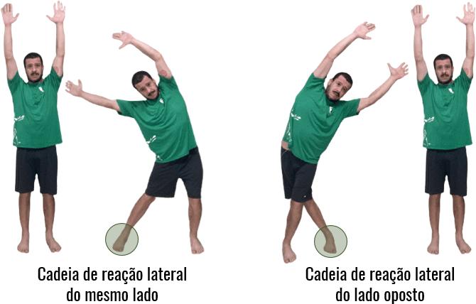 Zonas de transformação das cadeias de reação do plano frontal.